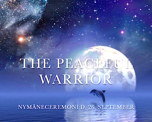 cover shop peaceful warrior